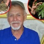 Legalizacija-Rik-Simpson-Marihuana-ulje