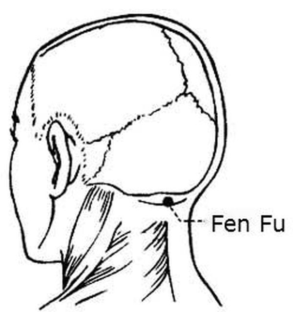 1375912854_fen-fu2-w