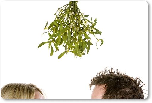 Detail of couple standing beneath bunch of mistletoe
