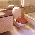 prirodna_sredstva_za_ciscenje_kupatila_m