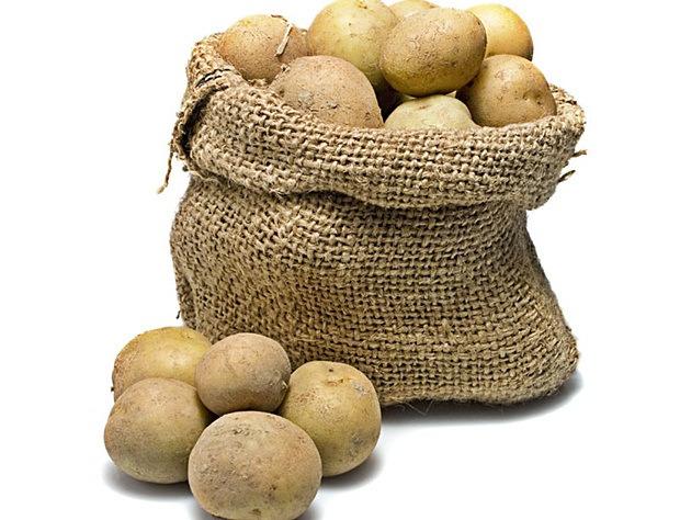 13-krompir