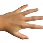 prsti-prstenjak-2