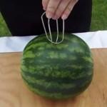 lubenica-trik