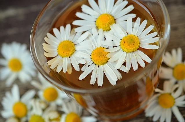 kamilica-čaj-pixabay
