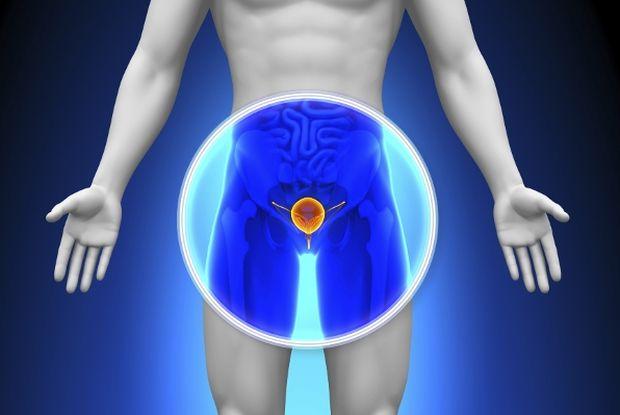 prostata-muskarac