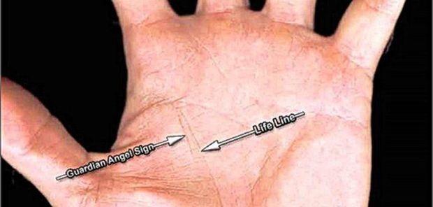 dlan-linija