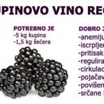 kupinovo-vino-recept