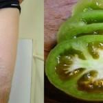 vene-paradaiz
