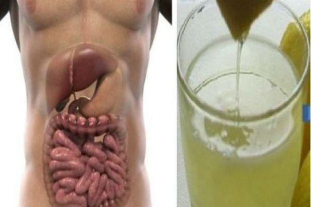 napitak-crijeva