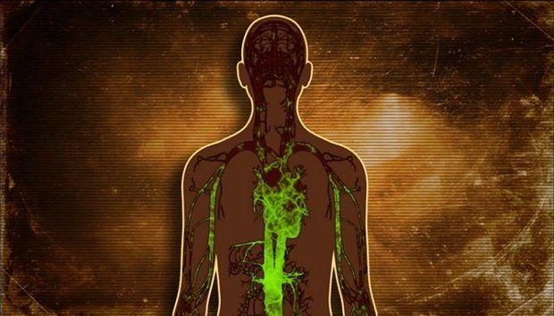 jetra-otrovi