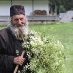 Savjeti monaha Gavrila za liječenje biljkama: Evo zašto su ljudi nekad bili mnogo zdraviji!