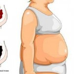 sok-6-dana-stomak