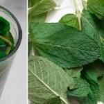 Ako popijete samo jednu šolju ovog čaja na dan, vaše tijelo će doživjeti veliki preobražaj (RECEPT)