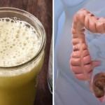 crijeva-radikalno-ciscenje