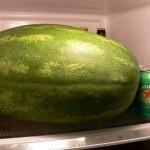 lubenica-1