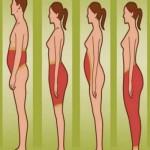 masnoca-tijelo
