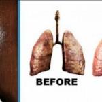 sok-pluca-nikotin