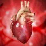 srce-oporavak