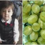 dijete-grozdje