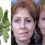 biljka-paraliza