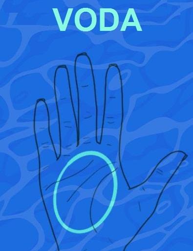 vodeni-dlanovi-3