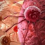 rak-oblik