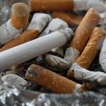 cigare-pixa