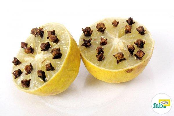 klincici-limun-2