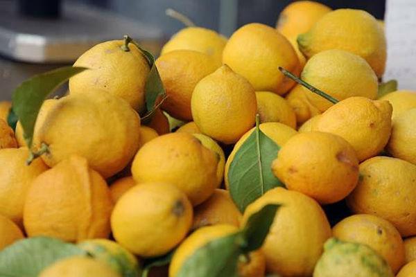 limun-lisce
