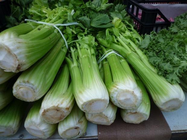 celery-248156_1280